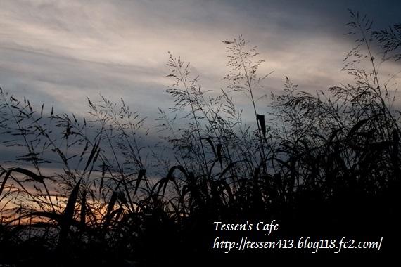 IMG_3538 - コピ
