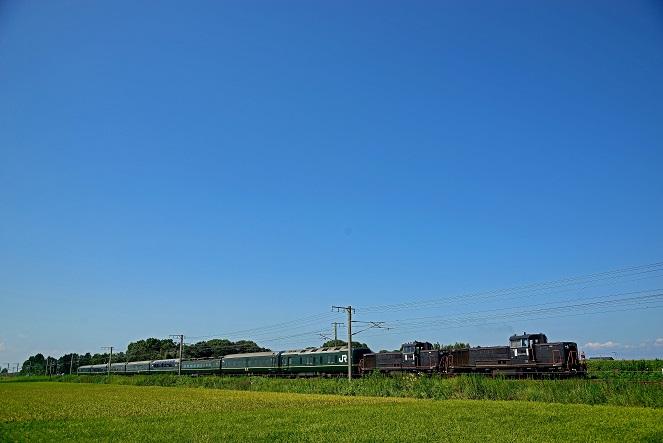 DS8_6215.jpg
