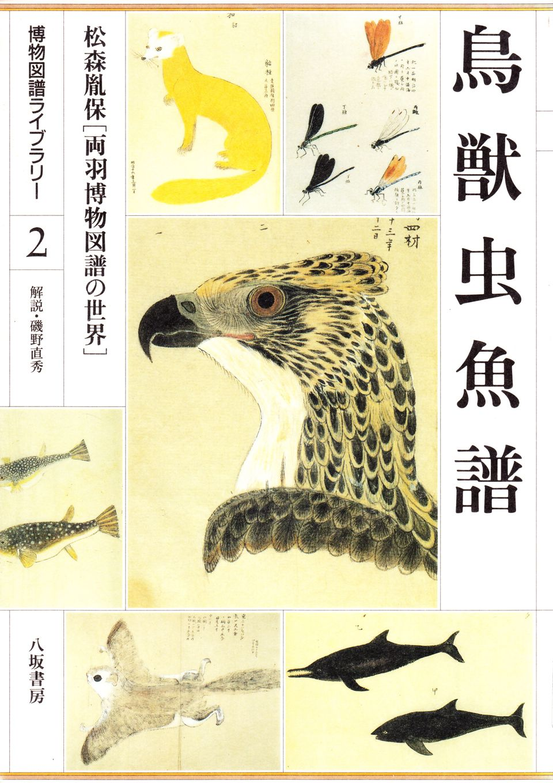 matsumori-4.jpg