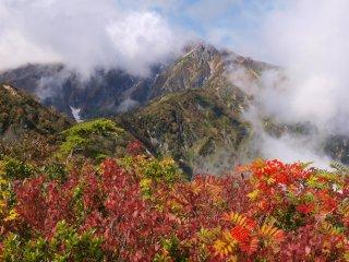 s04紅葉と後立山1