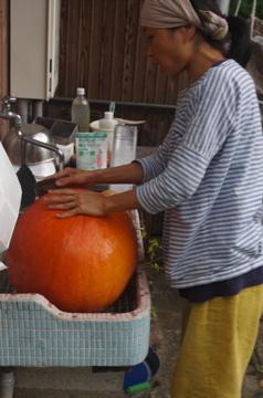 でかぼちゃ1