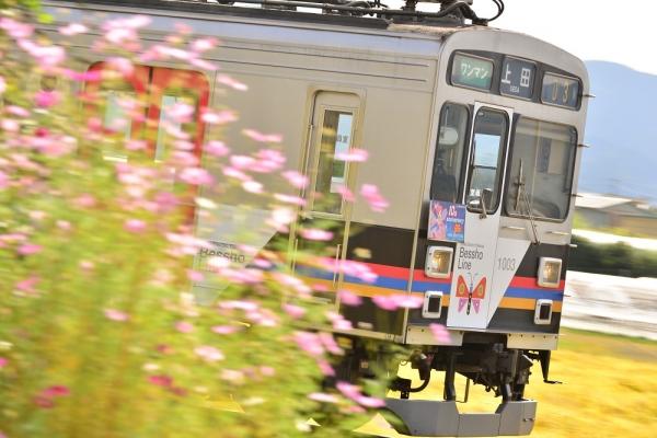 2015年9月30日 上田電鉄別所線 神畑~寺下 1000系1003編成