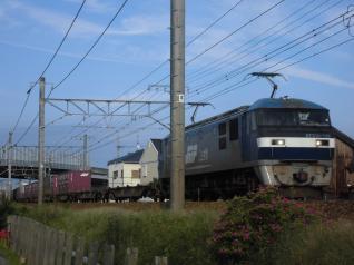 EF210-129