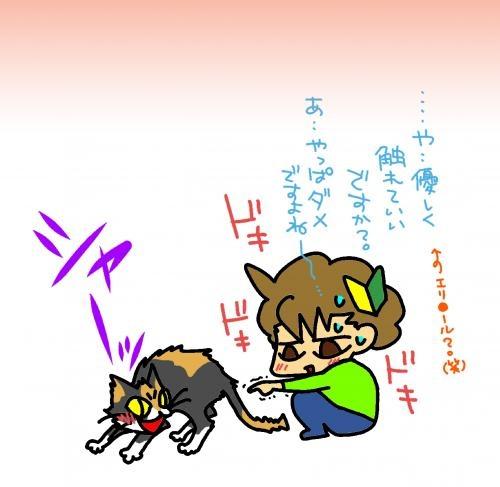 vsにゃんこ 初心者T氏。