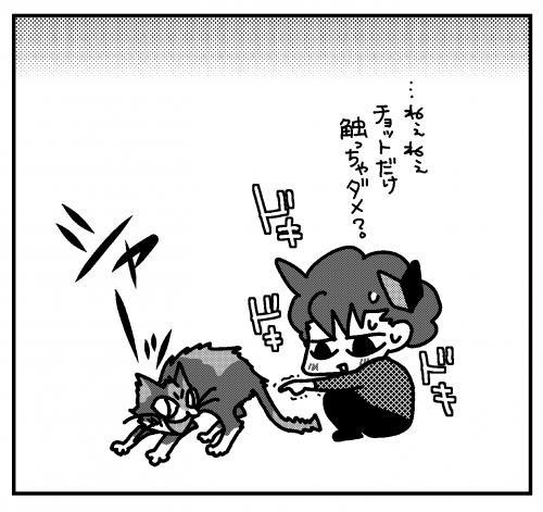 vsにゃんこ 初心者T氏。02