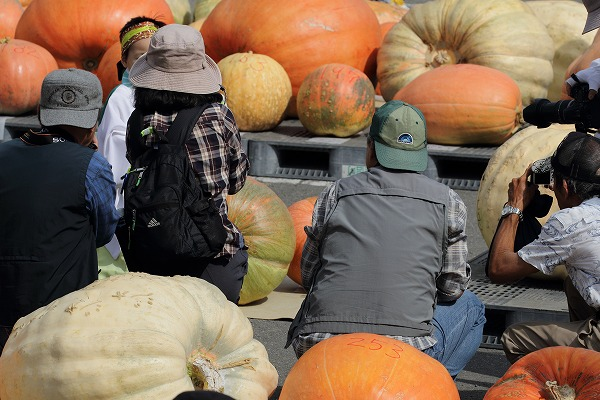 どてかぼちゃカーニバリ 150913 01