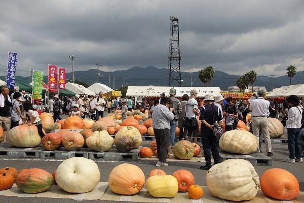 どてかぼちゃカーニバリ 150913 04