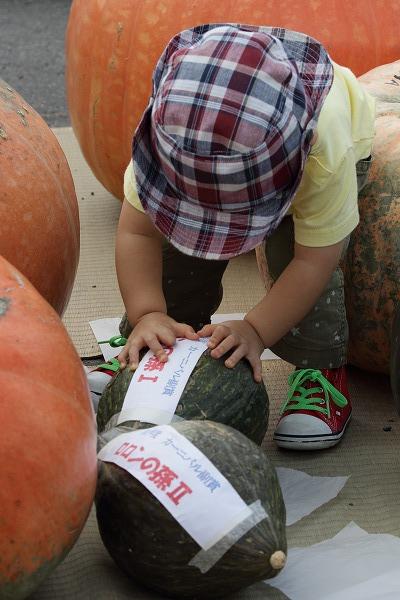 どてかぼちゃカーニバリ 150913 11