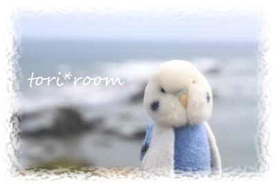 えりもの海*ハノリン