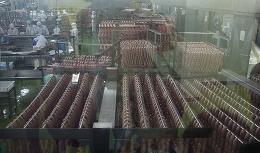 20151010信州ハム工場見学2