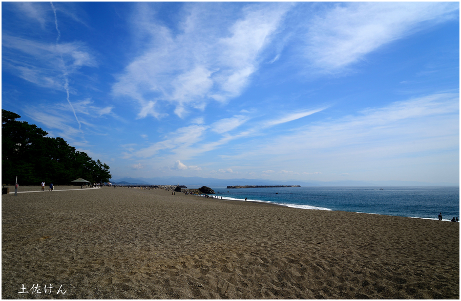 高知・桂浜2