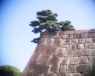 石垣と上弦の月・皇居東御苑:R2