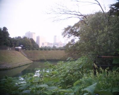 お決まりの国会議事堂と東京タワー:R2