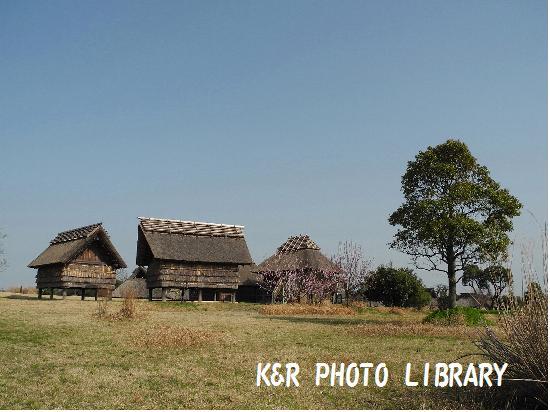3月21日南のムラ・風景1