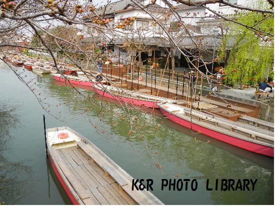 3月22日川下り乗船場3