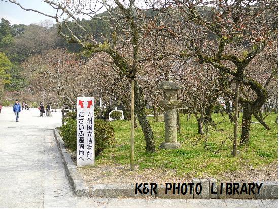 3月22日九州国立博物館1