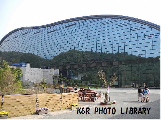 3月22日九州国立博物館3
