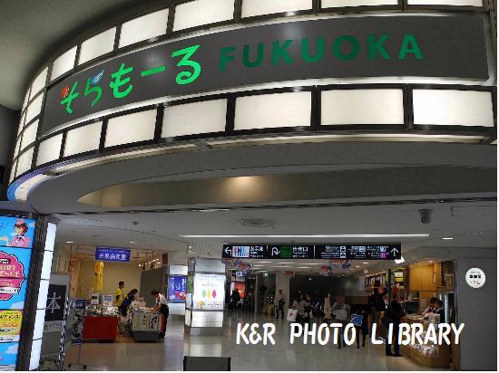 3月22日福岡空港2