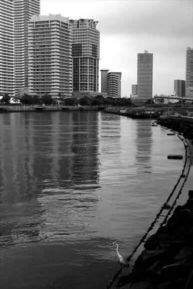 運河-8_R