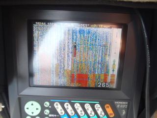 P9080015.jpg