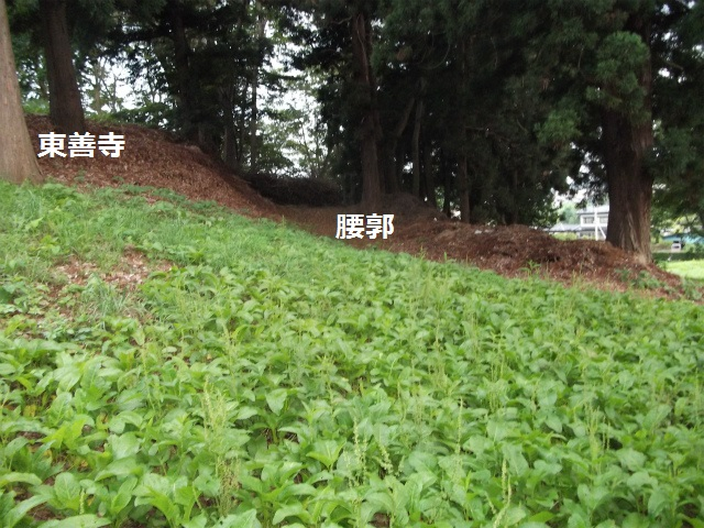DSCF3855.jpg
