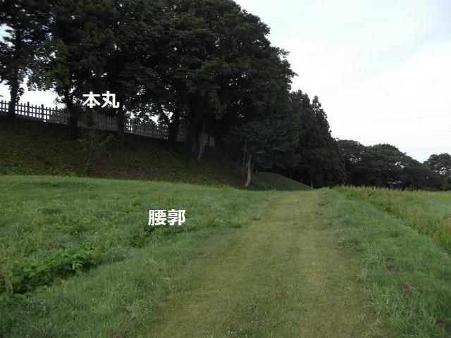 DSCF3908.jpg