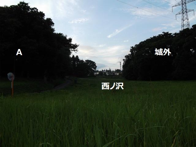 DSCF3917.jpg