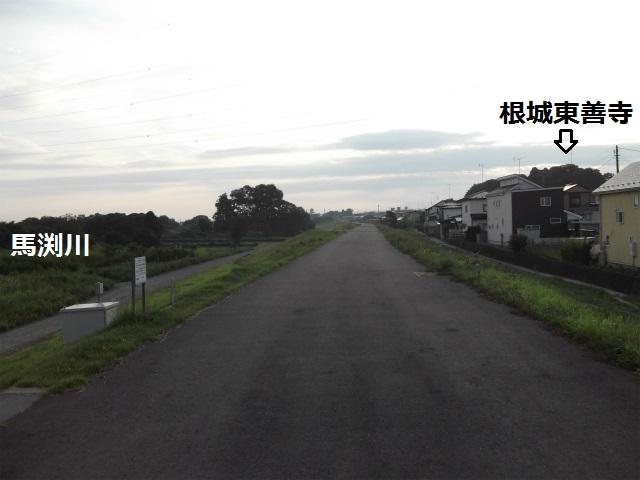DSCF3921.jpg