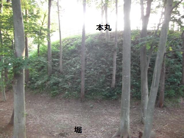 DSCF3927.jpg