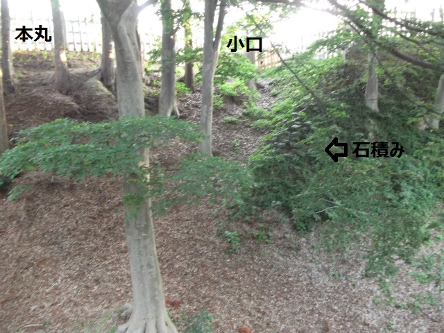 DSCF3935.jpg