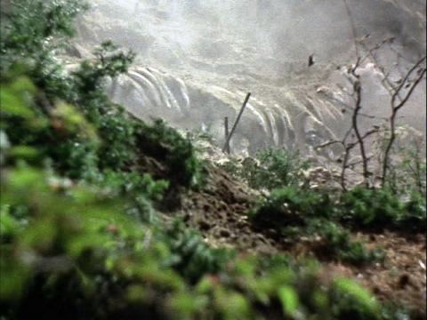 発掘現場から現れたステゴン