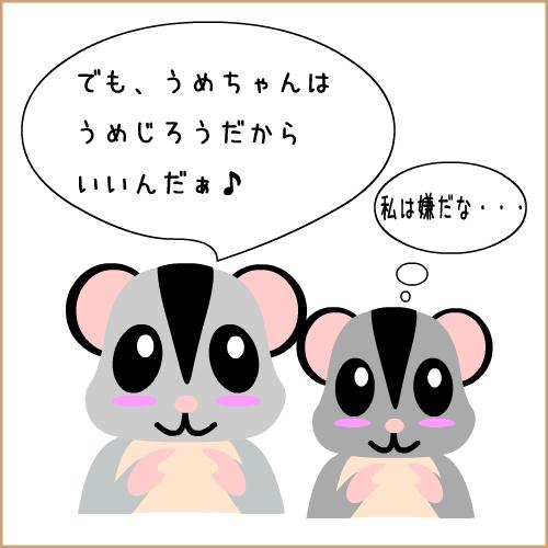 kichan4.jpg