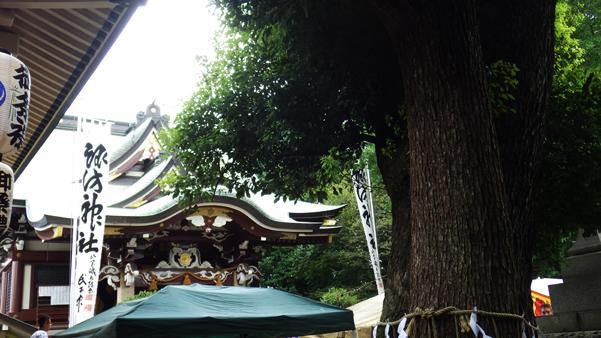 諏訪神社大祭