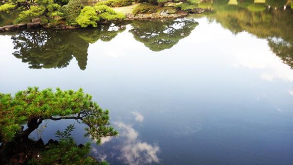 御苑の池の風景
