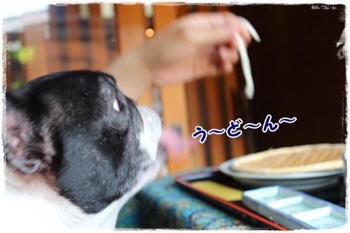 ぐじIMG_8606