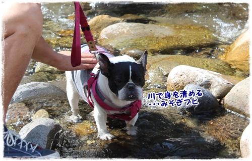 ぐじIMG_8633