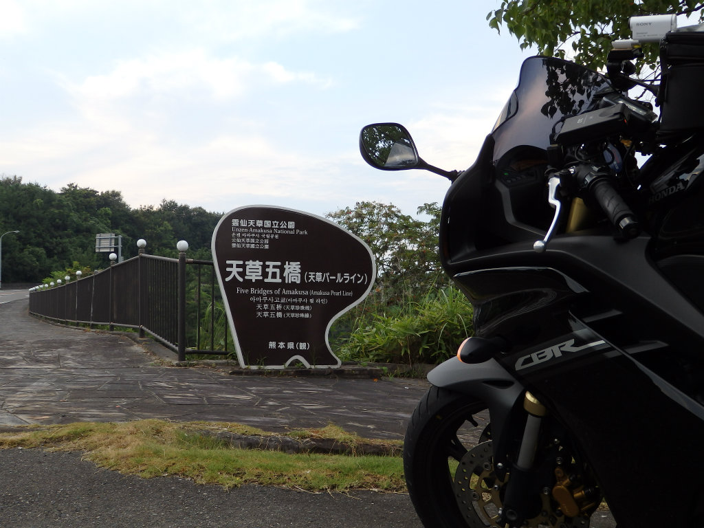 P8100095.jpg