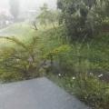 台風15号1