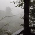 台風15号2
