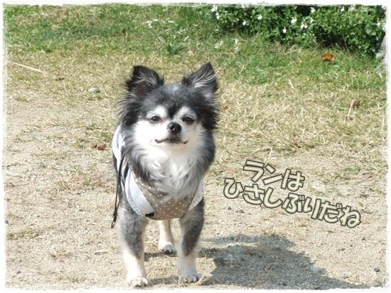 2015_1019naoとaiとtitis0051