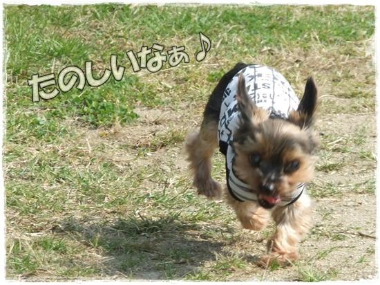 2015_1019naoとaiとtitis0055