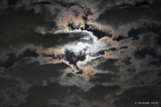 十五夜のお月さん