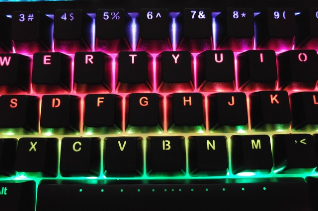 Ducky_Shine5_20.jpg