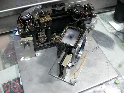 P1050202.JPG