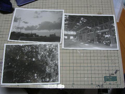 print.3.JPG