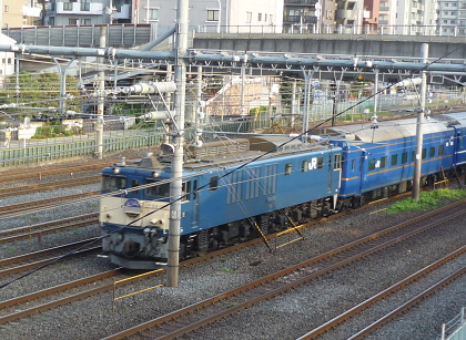 P1010131 - コピー.JPG