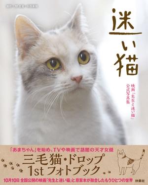 『先生と迷い猫』ドロップの写真集