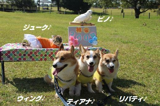 吉野ヶ里1 2015-10-17-6