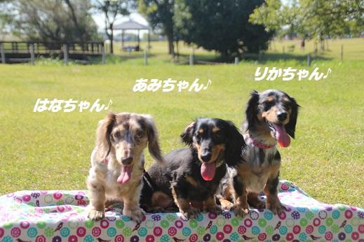 吉野ヶ里1 2015-10-17-8