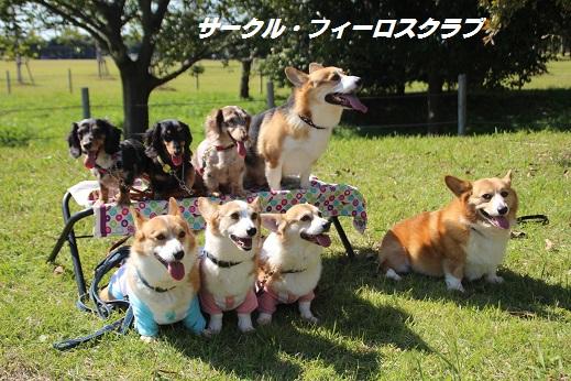 吉野ヶ里1 2015-10-17-11